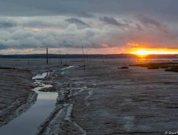 8 - Coucher de soleil au port d'Audenge