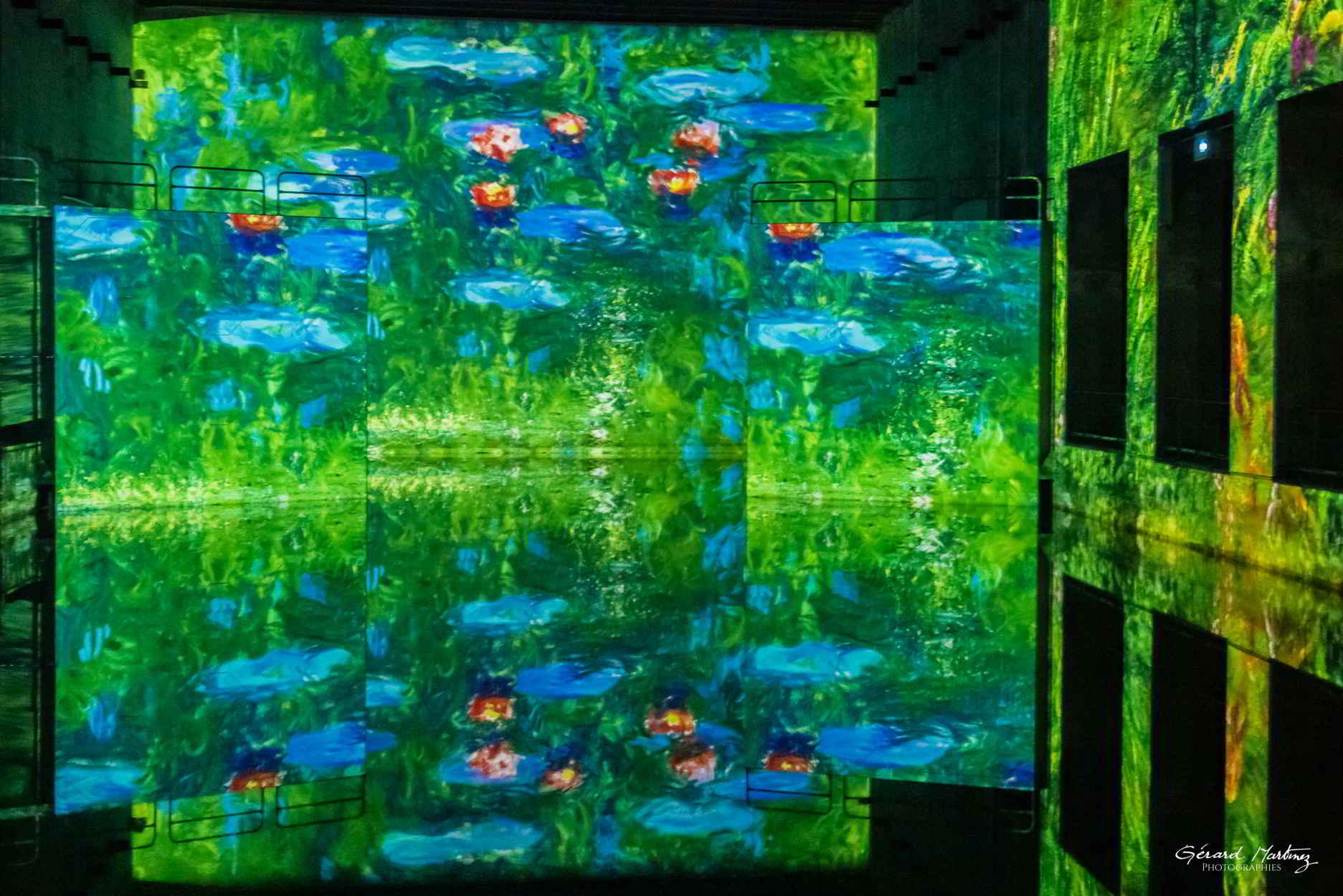 Le jardin d'eau de Monet.